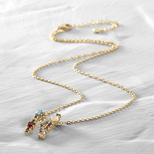 Natalie, Nicole. Short necklace with the letter N